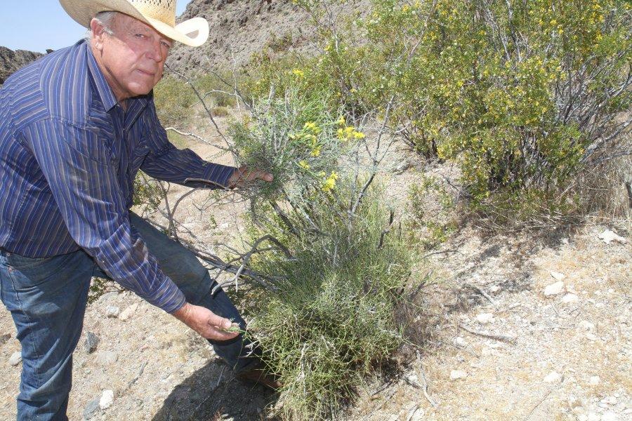 Last Cowboy Fighting - Cowboy Fights Feds, Keeps Old West Alive